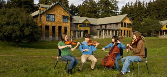 String ensemble playing on lawn