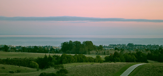 View of bay from campus at sunset